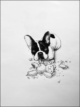 drawing of dog and a chewed up teddy