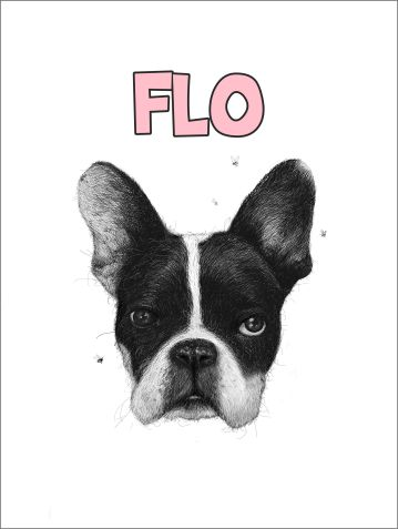 Pencil drawing portrait of a French bulldog called flo