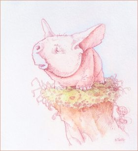 Pen and ink drawing with small pink creature sitting on a grassy rock