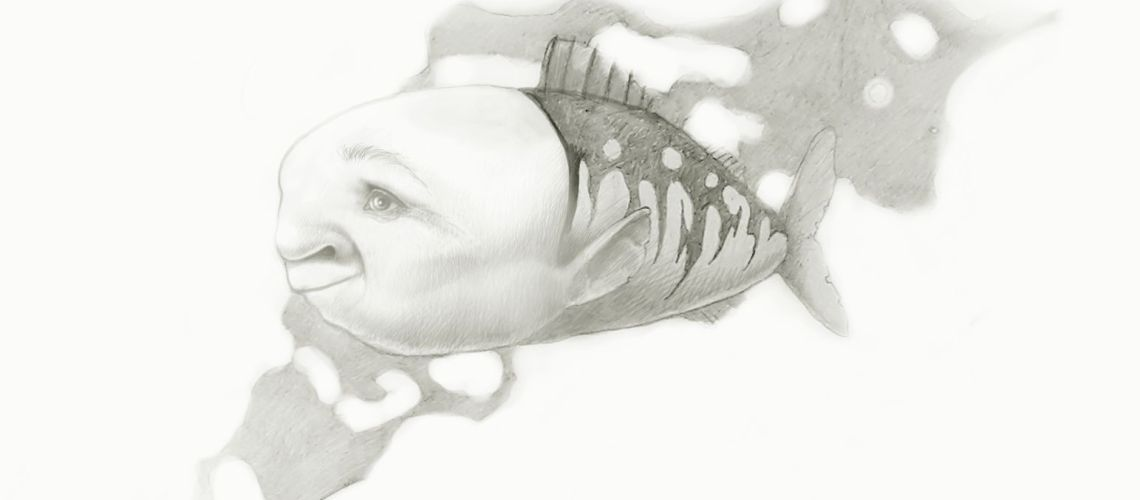 Pencil drawing of mermoid a fish with a face