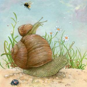 Drawing snails in a garden