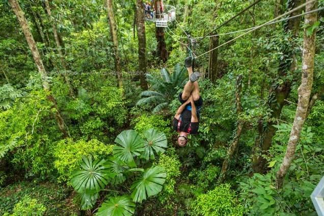 Tourist upside down on zip-line above tropical rainforest