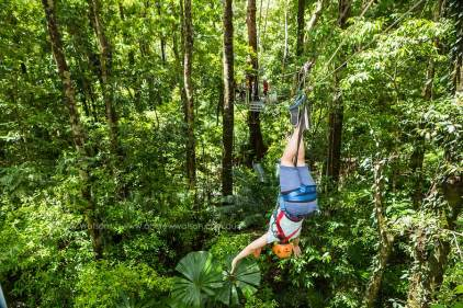 Tourist upside down on rainforest zip-line