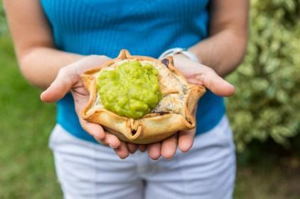 Image of a meat pie being held in hands at Pinnacle near Mackay