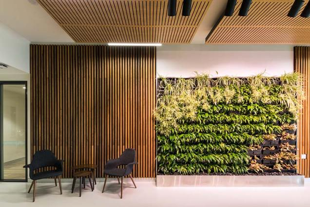 Wall of greenery in Spinal Life centre foyer, Cairns