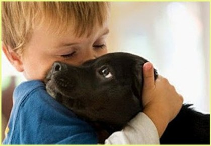 Собака - лучший друг Dog's best friend