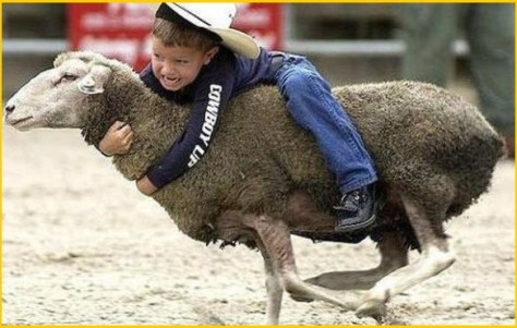 Ковбой на мустанге A cowboy on a Bronco