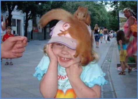 Белки на голове Protein on the head