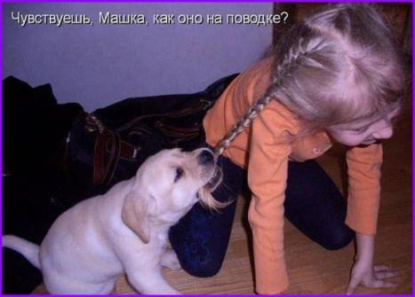 Щенок и девочка