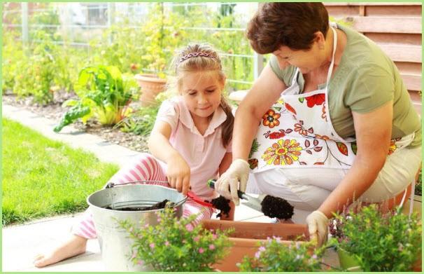 Девочка помогает бабушке высаживать цветочную рассаду
