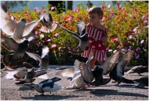 Девочки и голуби