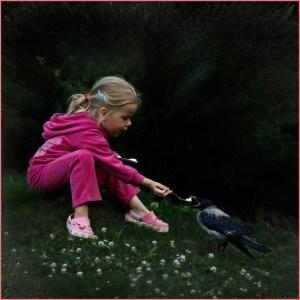 Кормит девочка ворону