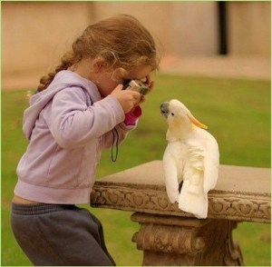 Девочка фотографирует попугая