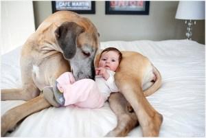 Малыш с собакой на кровати