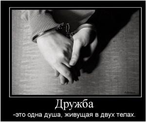 Дружба и дружеское пожатие рук
