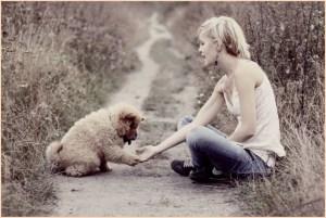 На картинке девочка дружит с собакой
