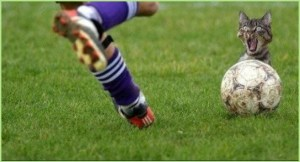 Картинка на аву для любителя футбола