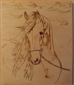 Картинка коня