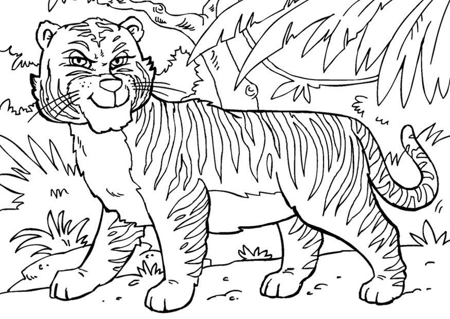 ройс амурский тигр фото для раскраски еще