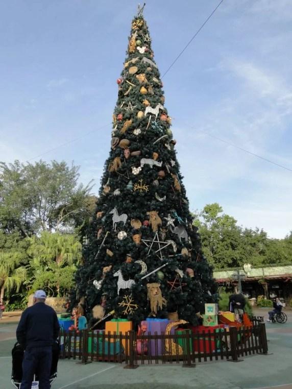 Natal em Orlando - Animal Kingdom