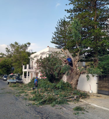Φροντίζοντας για την ασφάλεια, ΣΕΔΑ και Δήμος Άνδρου
