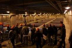 Belebtschlammbecken im Untergrund - ziemlich gross für Schweizer Verhältnisse...