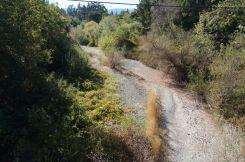 Kein Wasser im Napa River