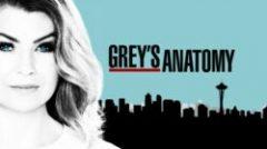 "Online epizode serije ""Grey's Anatomy"""