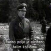 Krvavi put (1955) domaći film gledaj online
