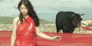 Sonja i bik (2012) domaći film gledaj online