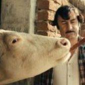 Traktor, ljubezen in Rock'n'Roll (2008) domaći film gledaj online