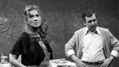 Useljenje (1981) domaći film gledaj online