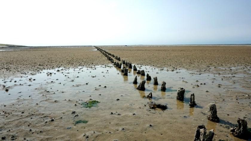 Кемпинг около северного моря (7)