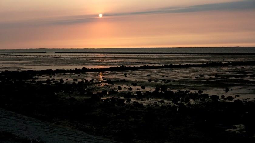 Северное море с палатками (1)