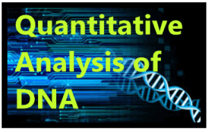 Quantitative Analysis of DNA 1