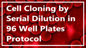 Cell Cloning by Serial Dilution in 96 Well Plates Protocol
