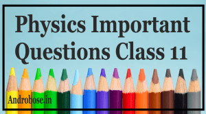 Physics Important Questions Class 11