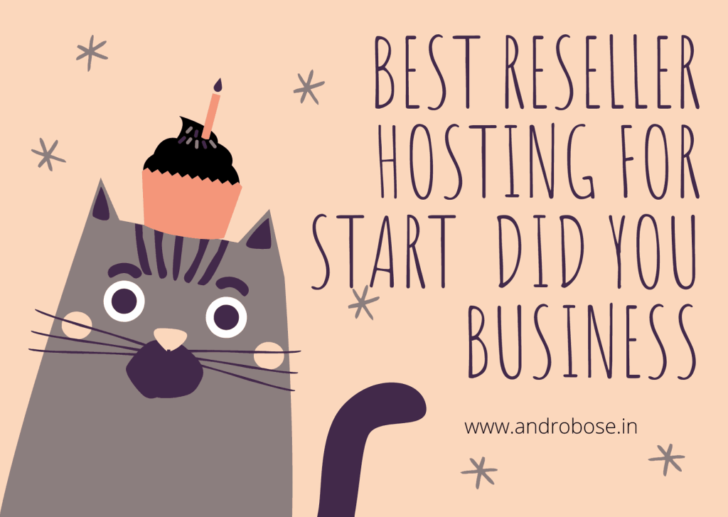 Best reseller hosting for start did you business