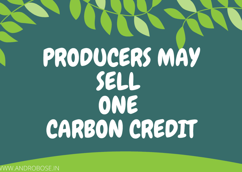 producers may sell one carbon credit
