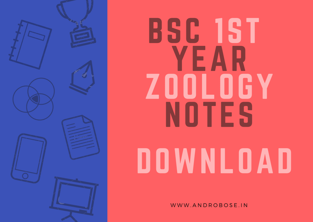 BSc 1st Year Zoology Notes