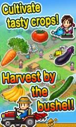 pocket-harvest-1