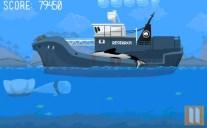 oregon-whale-2