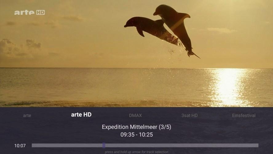 TV Mosaic Live DVB-t