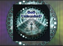 How To Install BOB Unleashed