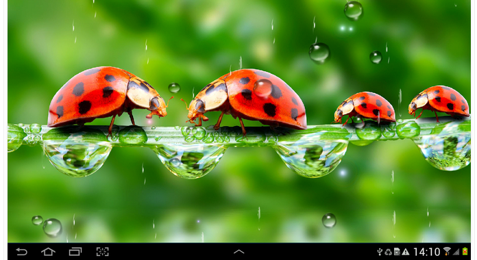 Rain Download Best Free Live Wallpapers for Android