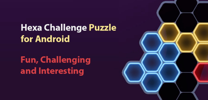 Hexa Challenge Puzzle for Android - Fun and Challenging Puzzle Game