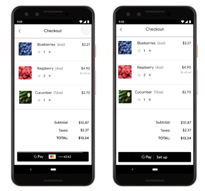 Google Pay Online Payments and Passes APIs A