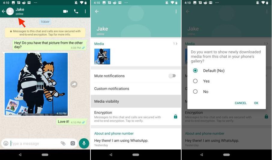 ocultar fotos y videos en WhatsApp Android