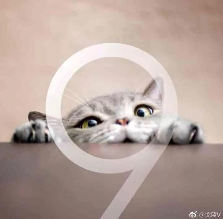 Já sabem como é o Galaxy S9 por dentro? (incluindo bateria) 6