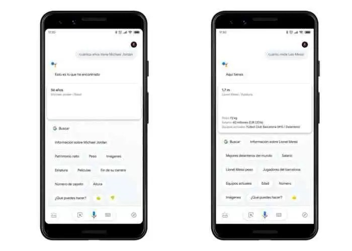 Google Assistant de Consultas